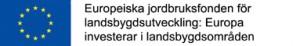 lippu_ja_tunnuslause_svenska